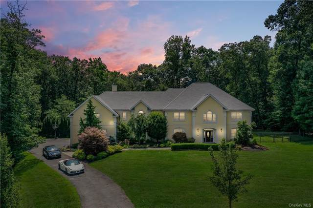 27 Sandyfields Lane, Stony Point, NY 10980 (MLS #H6022666) :: McAteer & Will Estates | Keller Williams Real Estate