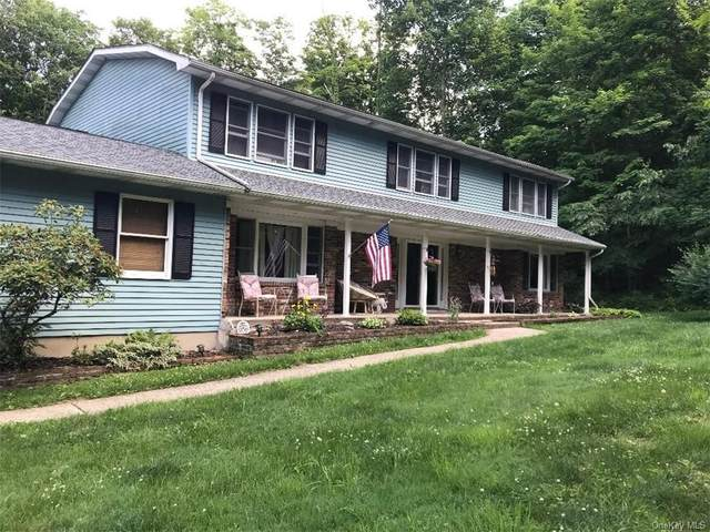 115 Roselawn Road, Highland Mills, NY 10930 (MLS #H6024851) :: William Raveis Baer & McIntosh
