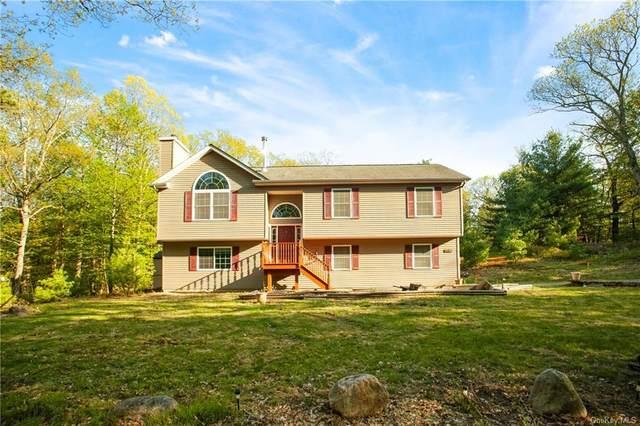 705 Prospect Hill Road, Deerpark, NY 12746 (MLS #H6040289) :: William Raveis Baer & McIntosh