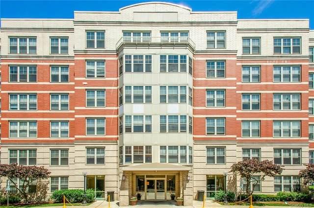 300 Mamaroneck Avenue #425, White Plains, NY 10605 (MLS #H6044880) :: Marciano Team at Keller Williams NY Realty