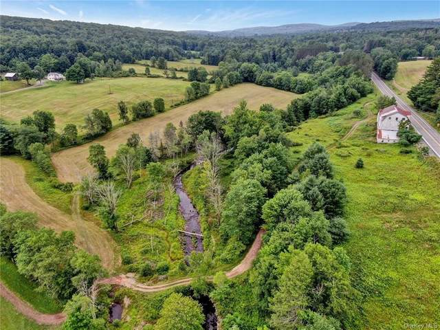 State Route 42, Neversink, NY 12740 (MLS #H6052411) :: Frank Schiavone with William Raveis Real Estate