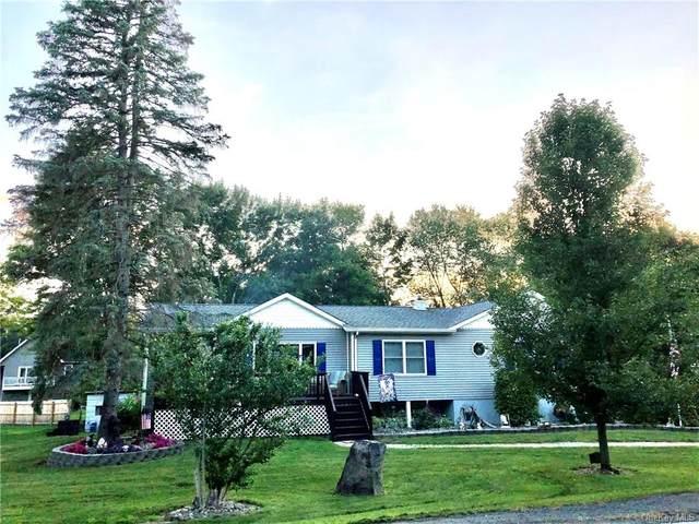 28 Emerson Drive, Washingtonville, NY 10992 (MLS #H6055525) :: William Raveis Baer & McIntosh