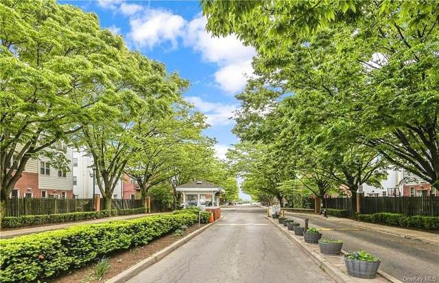 62 Heron Lane #392, Bronx, NY 10473 (MLS #H6056643) :: Nicole Burke, MBA | Charles Rutenberg Realty