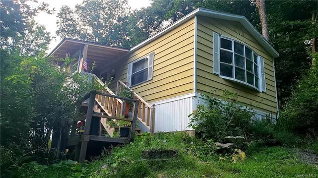 54 Highland Road, Neversink, NY 12765 (MLS #H6058664) :: William Raveis Baer & McIntosh