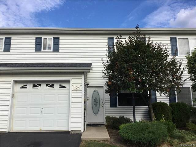 205 Tamerisk Lane, New Windsor, NY 12553 (MLS #H6059659) :: Kevin Kalyan Realty, Inc.