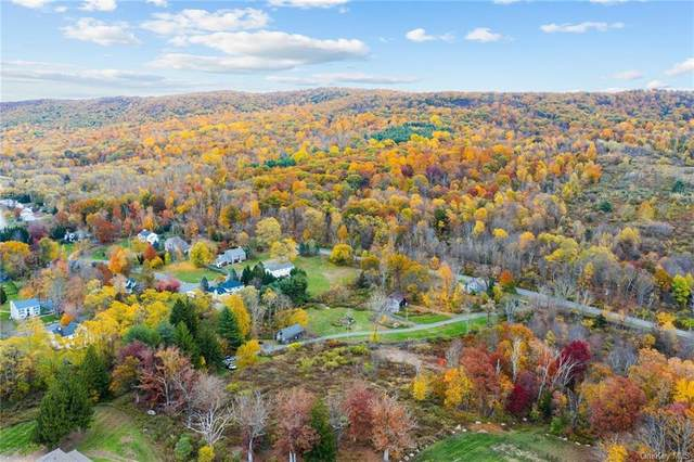 8 Apisson Trail, Highland Mills, NY 10930 (MLS #H6060685) :: Mark Seiden Real Estate Team
