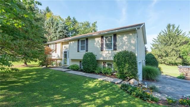 3 Riverside Drive, Pine Bush, NY 12566 (MLS #H6067933) :: Kendall Group Real Estate | Keller Williams