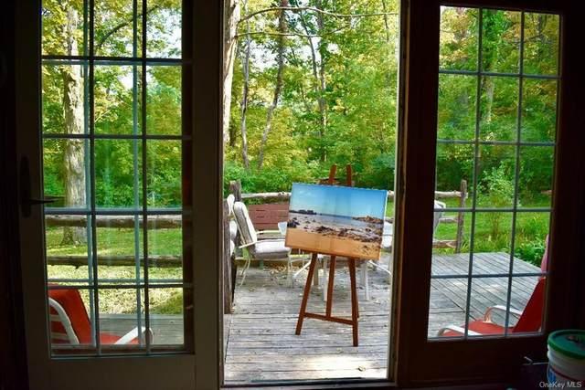 162 Horseshoe Road, Millbrook, NY 12545 (MLS #H6069535) :: McAteer & Will Estates | Keller Williams Real Estate