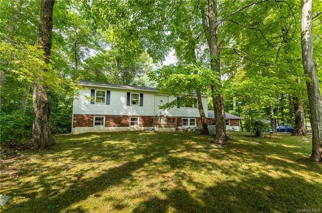 78 Ritter Road, Stormville, NY 12582 (MLS #H6071469) :: William Raveis Baer & McIntosh