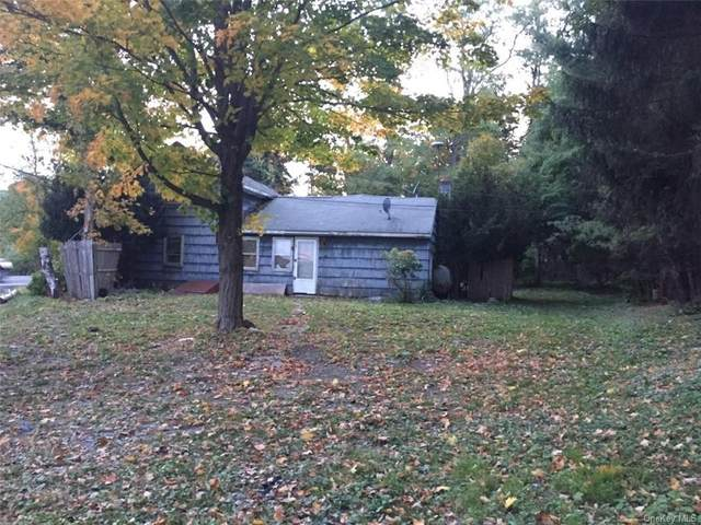 3831 Route 199, Pine Plains, NY 12567 (MLS #H6071768) :: Kendall Group Real Estate | Keller Williams