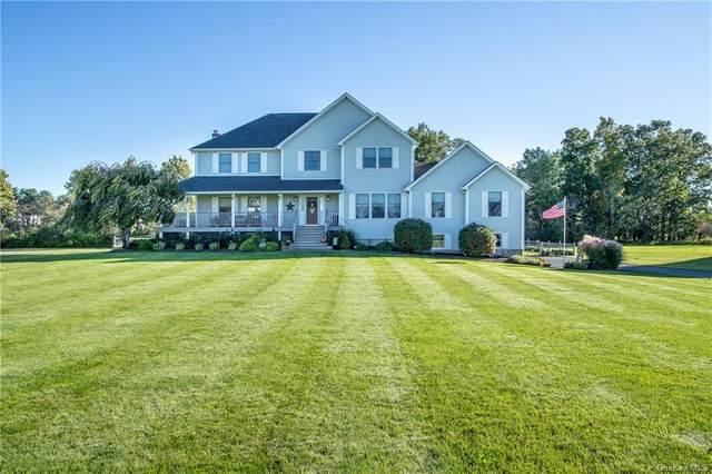 9 Dolly Lane, Lagrangeville, NY 12540 (MLS #H6072841) :: Kendall Group Real Estate | Keller Williams