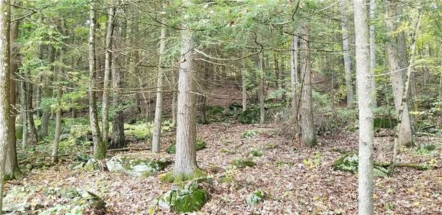 (9) Nys Route 97, Narrowsburg, NY 12764 (MLS #H6073468) :: Keller Williams Points North - Team Galligan