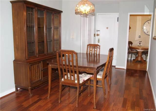 50 White Oak Street 4B, New Rochelle, NY 10801 (MLS #H6074030) :: William Raveis Baer & McIntosh