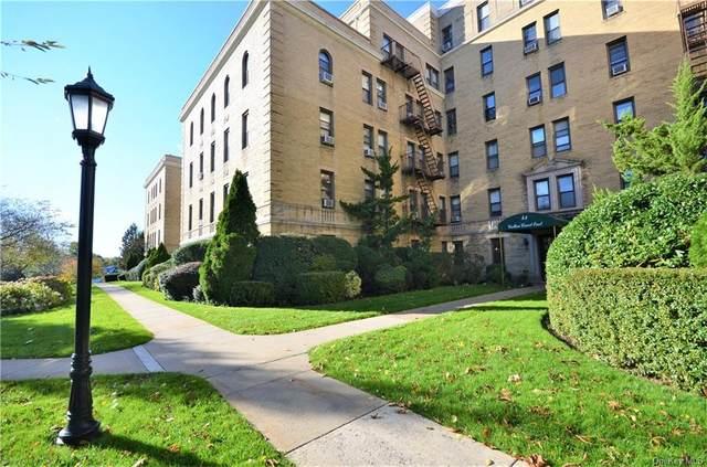 43 Calton Road 3J, New Rochelle, NY 10804 (MLS #H6075547) :: Carollo Real Estate