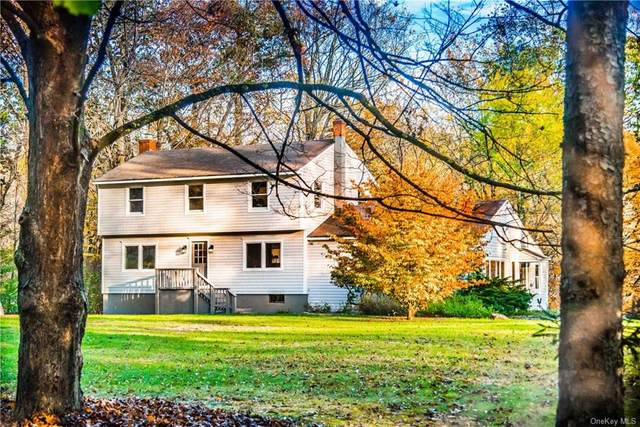 163 Ridgefield Avenue, South Salem, NY 10590 (MLS #H6080236) :: Mark Boyland Real Estate Team