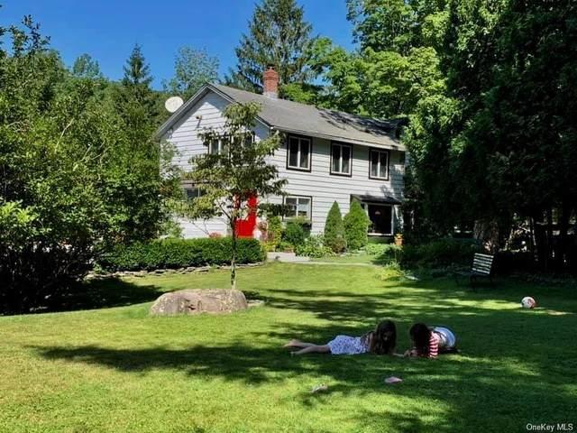 129 Griffin Road, Forestburgh, NY 12777 (MLS #H6080426) :: McAteer & Will Estates | Keller Williams Real Estate