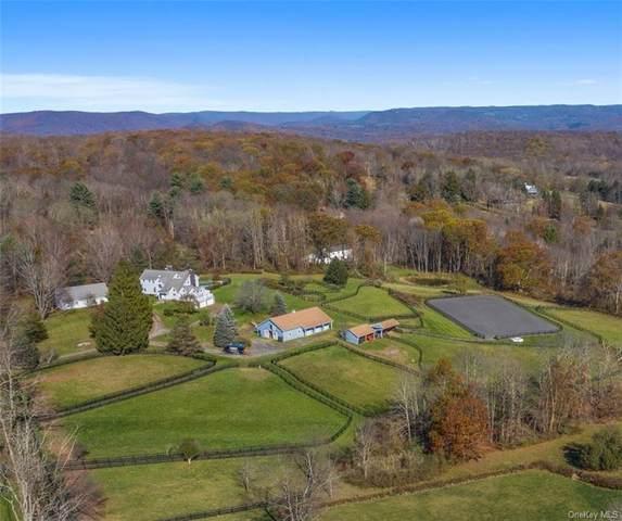 738 N Quaker Hill Road, Pawling, NY 12564 (MLS #H6080770) :: Mark Boyland Real Estate Team