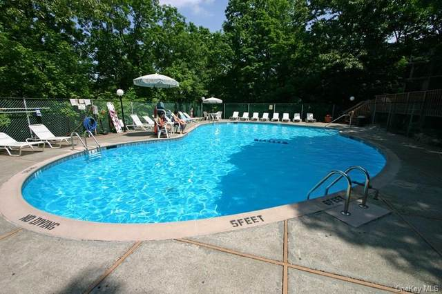 150 Overlook Avenue 2H, Peekskill, NY 10566 (MLS #H6083001) :: McAteer & Will Estates | Keller Williams Real Estate