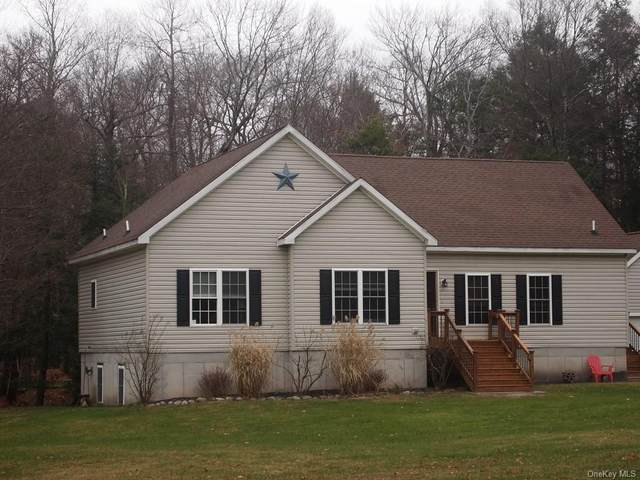 7 Drake Road, Neversink, NY 12765 (MLS #H6083159) :: Mark Seiden Real Estate Team