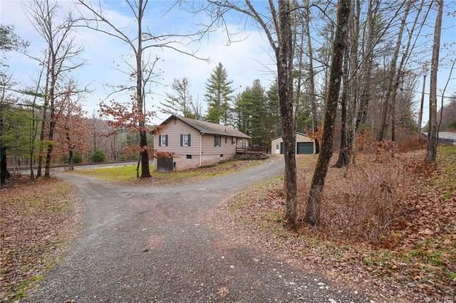 7215 State Route 97, Narrowsburg, NY 12764 (MLS #H6085495) :: McAteer & Will Estates | Keller Williams Real Estate