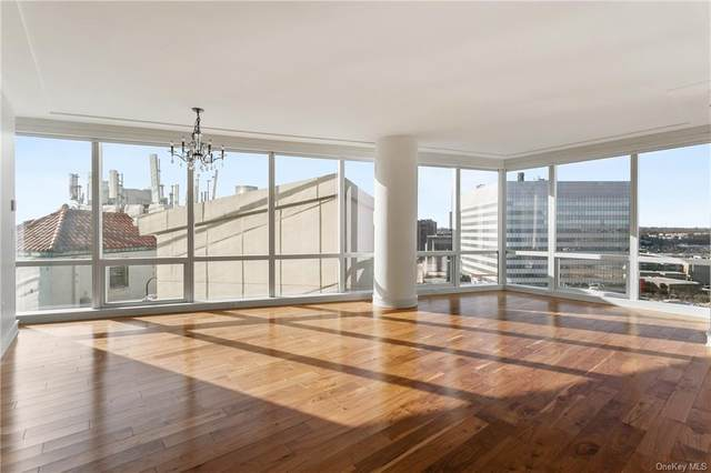 1 Renaissance Square 14E, White Plains, NY 10601 (MLS #H6087949) :: The McGovern Caplicki Team