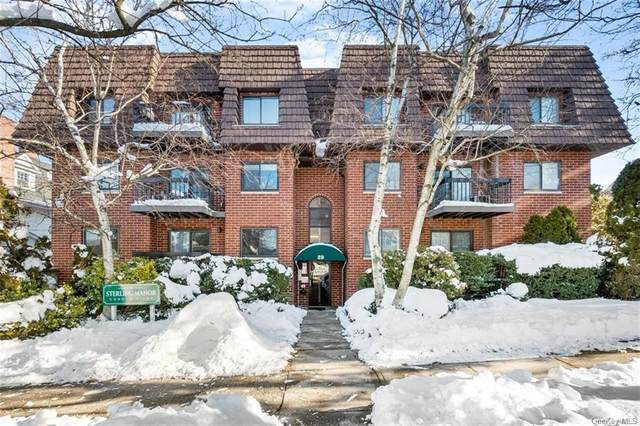 39 Sterling Avenue 8C, White Plains, NY 10606 (MLS #H6094670) :: The McGovern Caplicki Team