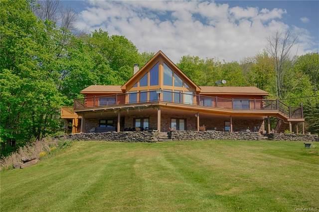 2475 Vega Mountain Road, East Meredith, NY 12474 (MLS #H6095776) :: Cronin & Company Real Estate