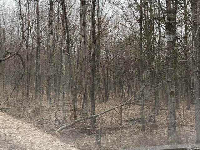 Ed Klug Road, Franklin, NY 13755 (MLS #H6101764) :: Nicole Burke, MBA | Charles Rutenberg Realty
