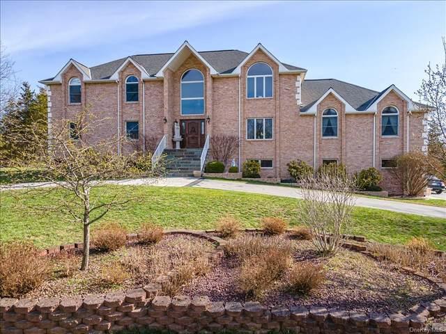 11 Ridgeview Lane, Pleasant Valley, NY 12569 (MLS #H6105065) :: Kendall Group Real Estate | Keller Williams