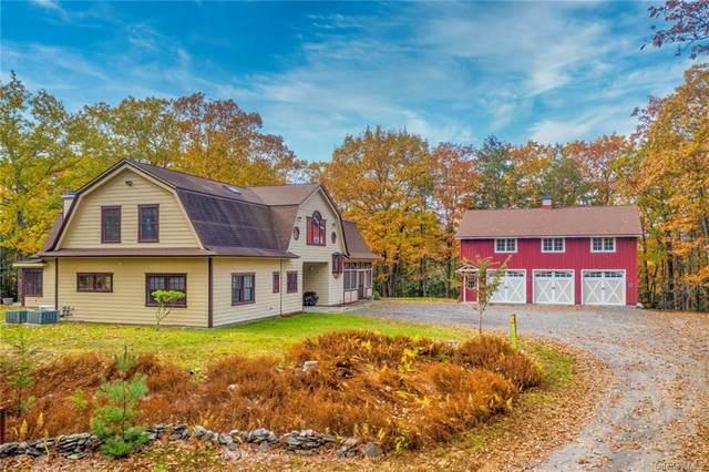 95 Harmati Lane, Woodstock, NY 12498 (MLS #H6105107) :: Goldstar Premier Properties