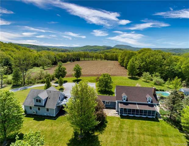 422 County Route 7, Pine Plains, NY 12567 (MLS #H6107946) :: Carollo Real Estate
