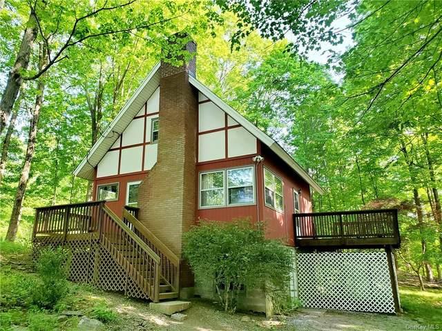 16 Birch Terrace, Pawling, NY 12564 (MLS #H6109384) :: Cronin & Company Real Estate