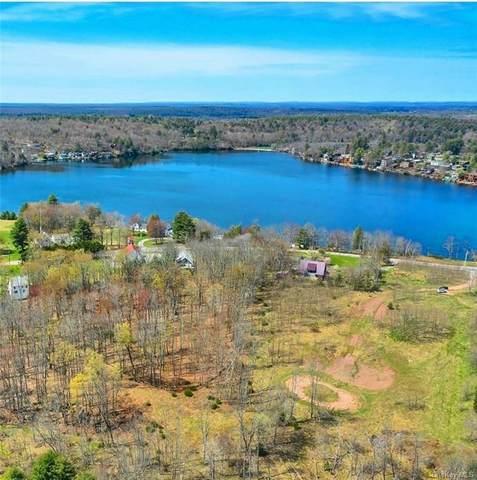 TBD Horseshoe Lake Road, Kauneonga Lake, NY 12749 (MLS #H6109420) :: Nicole Burke, MBA | Charles Rutenberg Realty