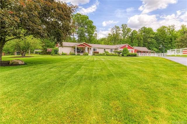 202 Pine Island Turnpike, Warwick, NY 10990 (MLS #H6111629) :: Carollo Real Estate
