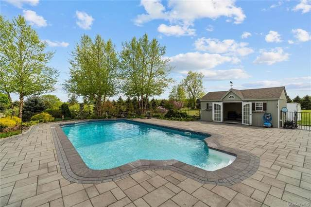 161 Bergen Circle, Slate Hill, NY 10973 (MLS #H6112253) :: Signature Premier Properties