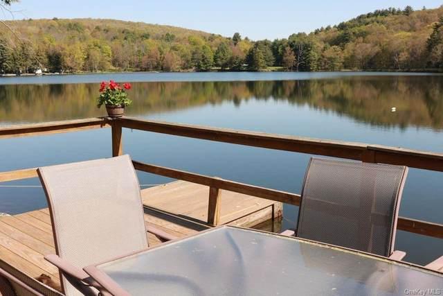 20 Silver Lake, Call Listing Agent, NY 13783 (MLS #H6113350) :: RE/MAX RoNIN
