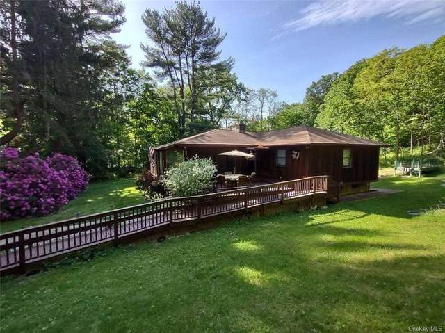 13 Quaker Hill Road, Pleasant Valley, NY 12569 (MLS #H6119699) :: Corcoran Baer & McIntosh