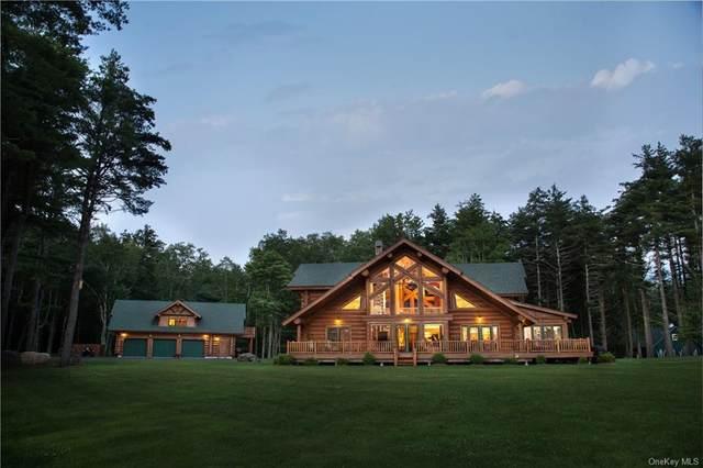 398 Claryville Road, Claryville, NY 12725 (MLS #H6119722) :: Carollo Real Estate