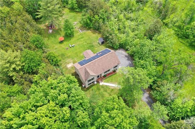 256 State Route 32 N, New Paltz, NY 12561 (MLS #H6121312) :: RE/MAX RoNIN