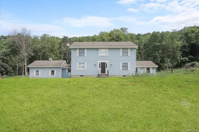60 Cedar Lane, Poughquag, NY 12570 (MLS #H6121954) :: Barbara Carter Team