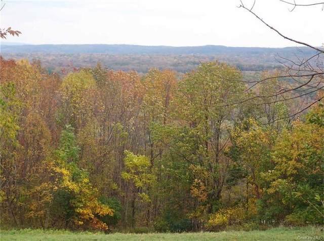 9 Eagle Wood Vista Lane, Warwick, NY 10990 (MLS #H6127120) :: Goldstar Premier Properties