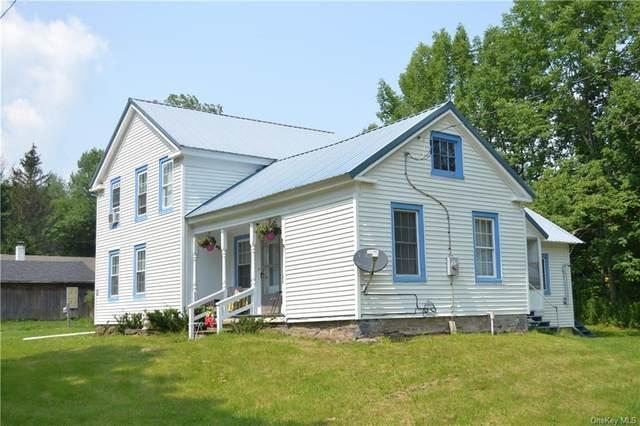 5260 County Highway 23, Walton, NY 13856 (MLS #H6129915) :: Goldstar Premier Properties