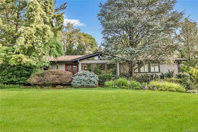 6 Snowdrop Drive, New City, NY 10956 (MLS #H6130648) :: Goldstar Premier Properties