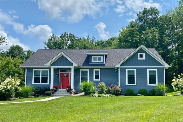 20 Eck Road, Wappingers Falls, NY 12590 (MLS #H6131039) :: Nicole Burke, MBA | Charles Rutenberg Realty
