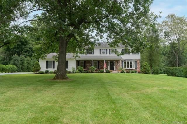 73 Saddle Ridge Drive, Hopewell Junction, NY 12533 (MLS #H6131140) :: Howard Hanna | Rand Realty