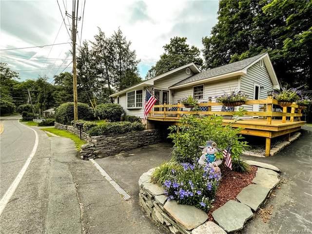 218 Yankee Lake Road, Wurtsboro, NY 12790 (MLS #H6133208) :: Howard Hanna | Rand Realty