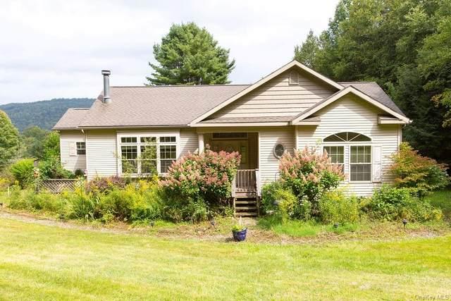 73 Dutch Hill Road, Roscoe, NY 12776 (MLS #H6138075) :: McAteer & Will Estates   Keller Williams Real Estate