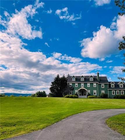 79 Millbrook Road, Wallkill, NY 12589 (MLS #H6138974) :: Cronin & Company Real Estate