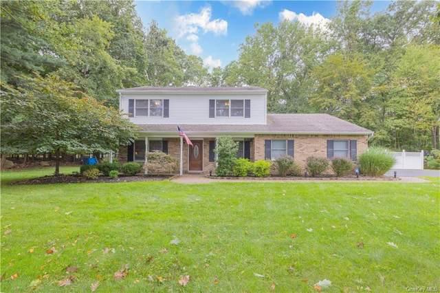 87 Center Street, Pearl River, NY 10965 (MLS #H6143763) :: Signature Premier Properties