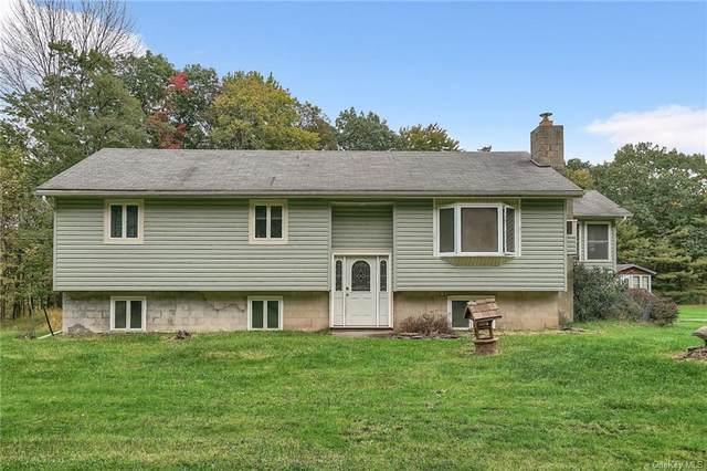 69 Galligan Road, Cuddebackville, NY 12729 (MLS #H6146270) :: Cronin & Company Real Estate